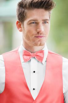 Expressions Dark Coral Bow Tie