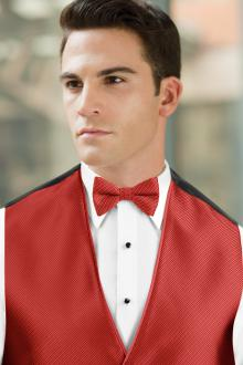 Synergy Ferrari Red Bow Tie