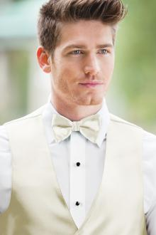 Expressions Ivory Bow Tie