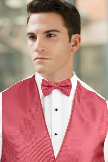 Synergy Pomegranate Bow Tie