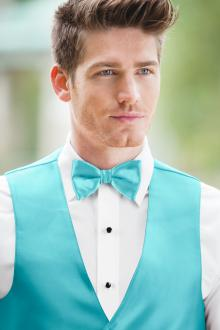 Expressions Turquoise Bow Tie