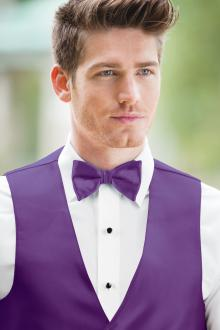 Expressions Viola Bow Tie