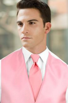 Solid Pink Windsor