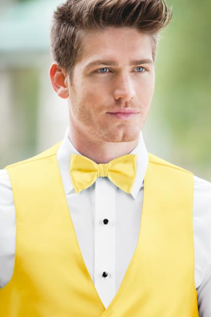 Expressions Buttercup Bow Tie