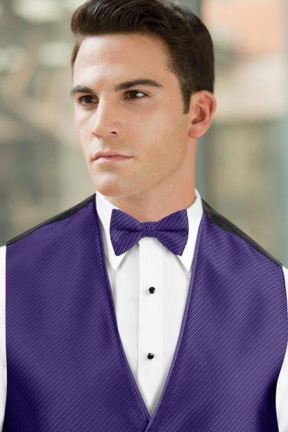 Synergy Regency Bow Tie