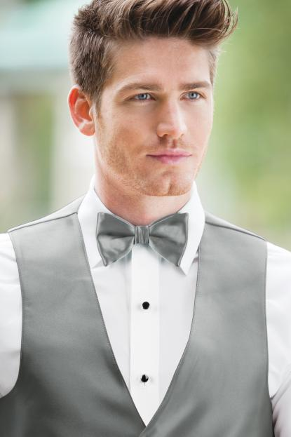 Expressions Silver Bow Tie