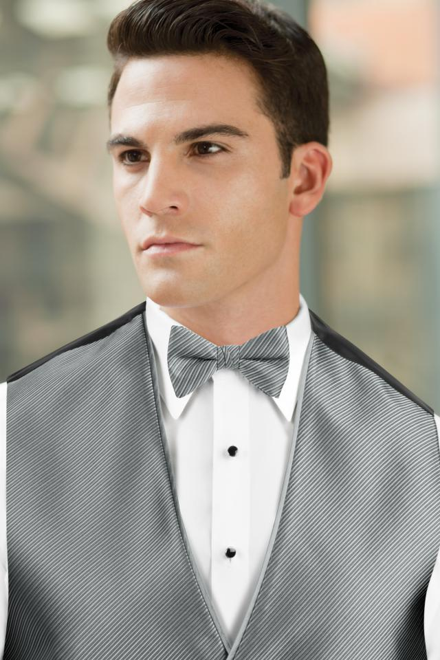 Synergy Silver Bow Tie